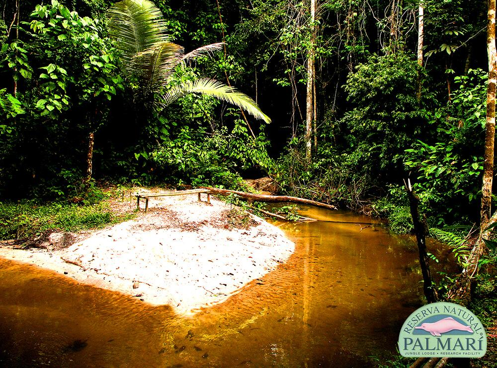 Reserva-Natural-Palmari-Activities-023