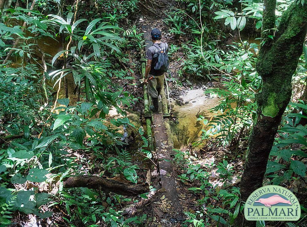Reserva-Natural-Palmari-Activities-133