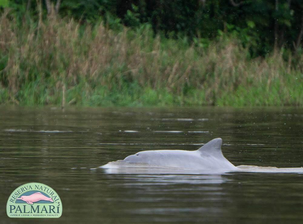 Reserva-Natural-Palmari-Activities-137