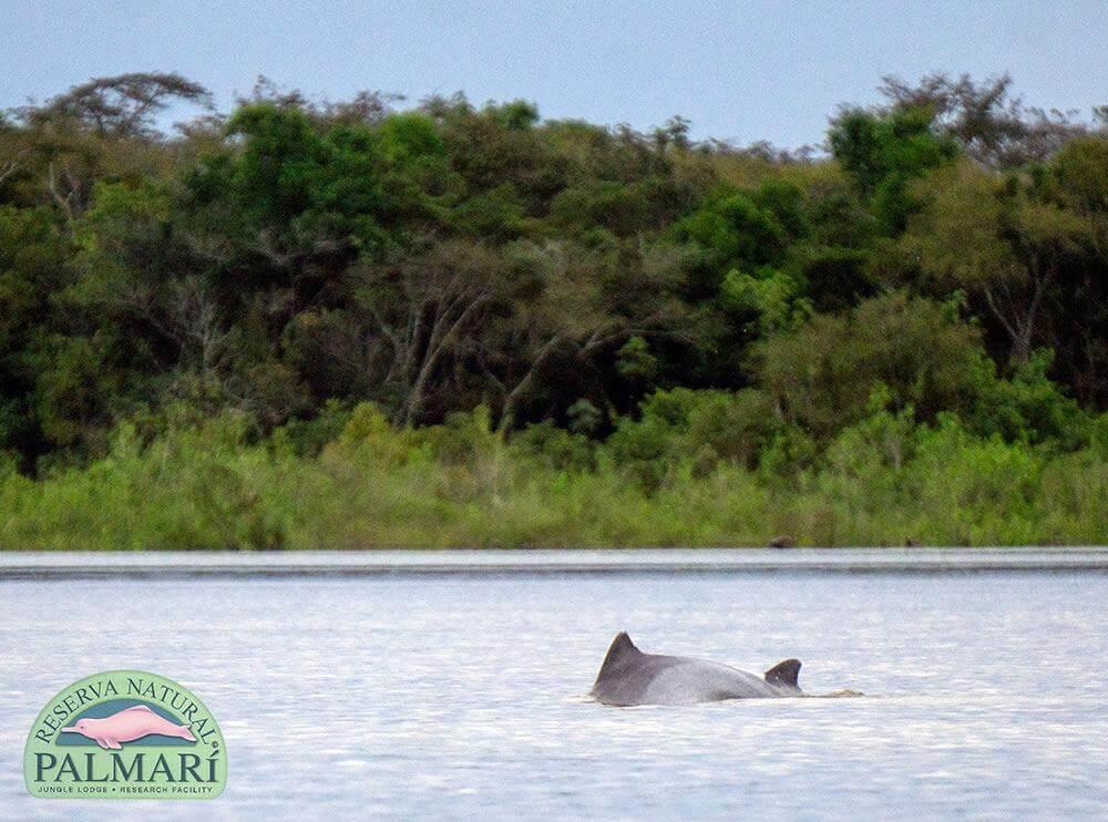 Reserva-Natural-Palmari-Activities-139