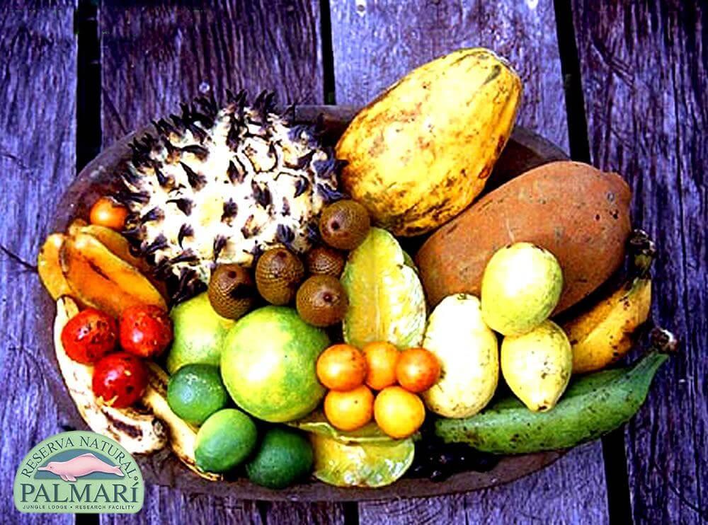 Reserva-Natural-Palmari-Food-14