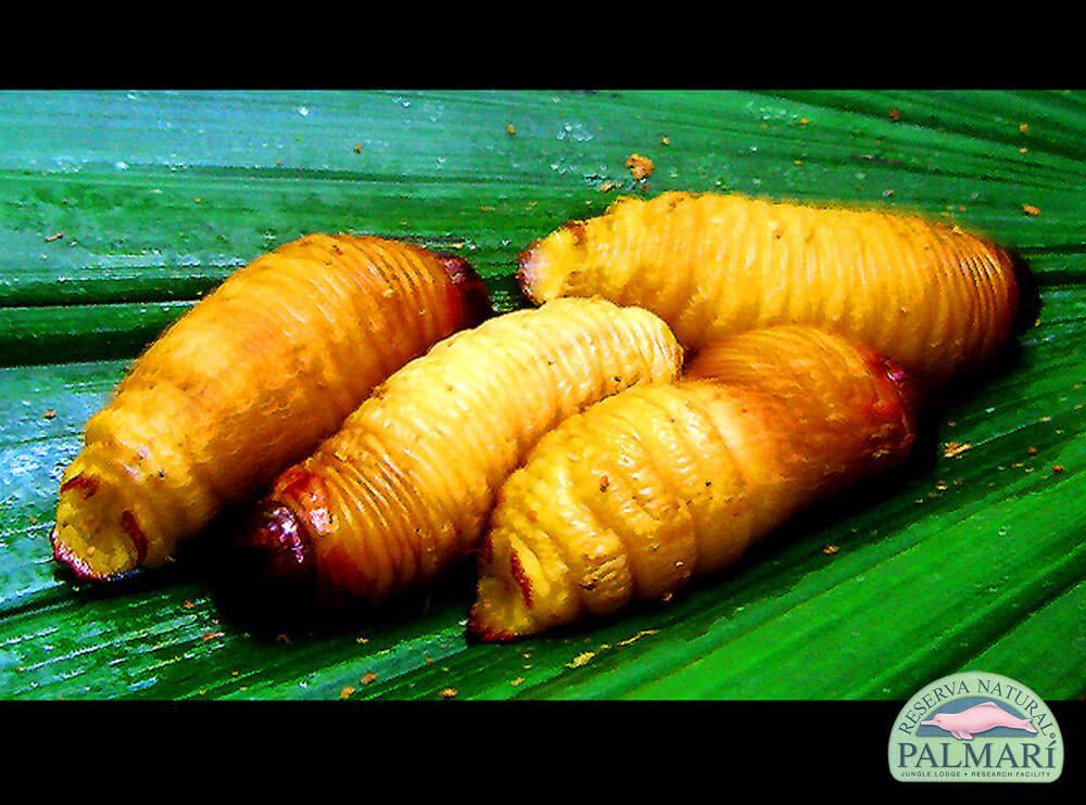 Reserva-Natural-Palmari-Food-18