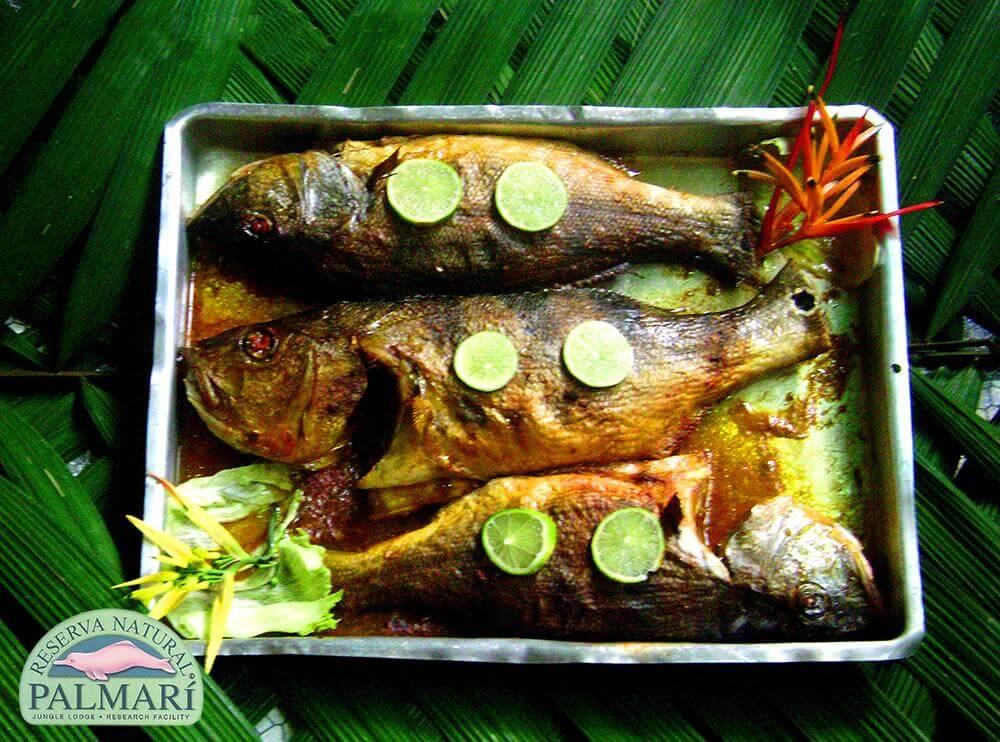 Reserva-Natural-Palmari-Food-21