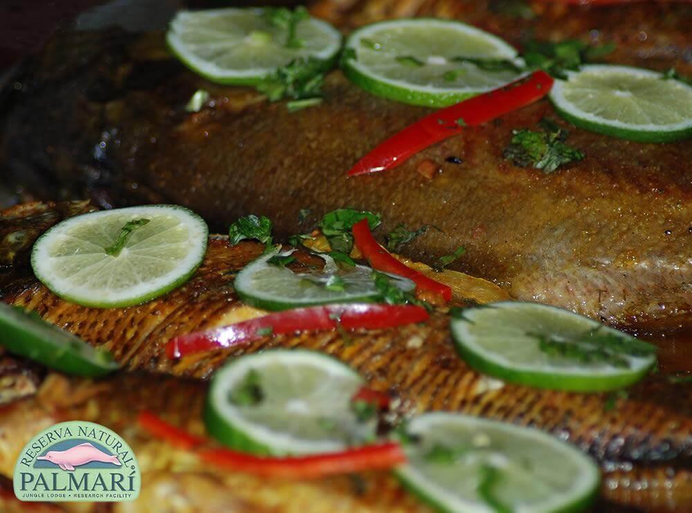 Reserva-Natural-Palmari-Food-24