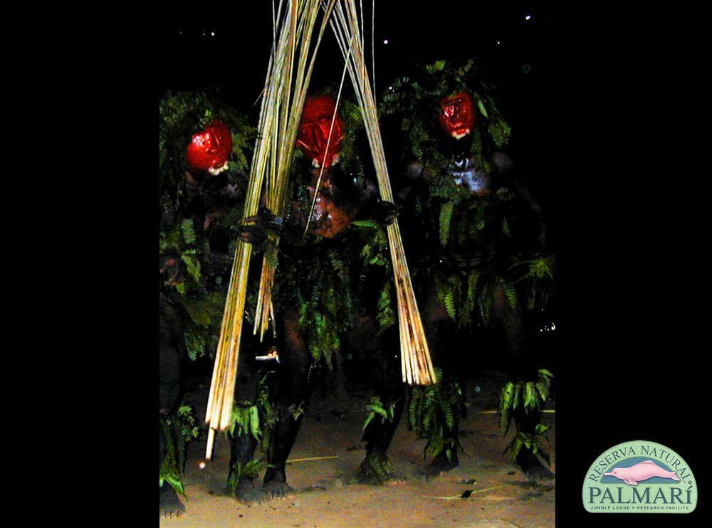 Reserva-Natural-Palmari-Indigenous-01