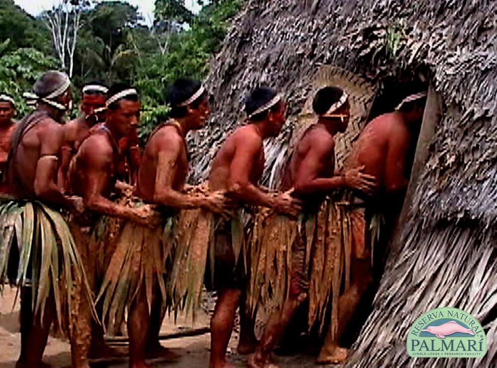 Reserva-Natural-Palmari-Indigenous-11