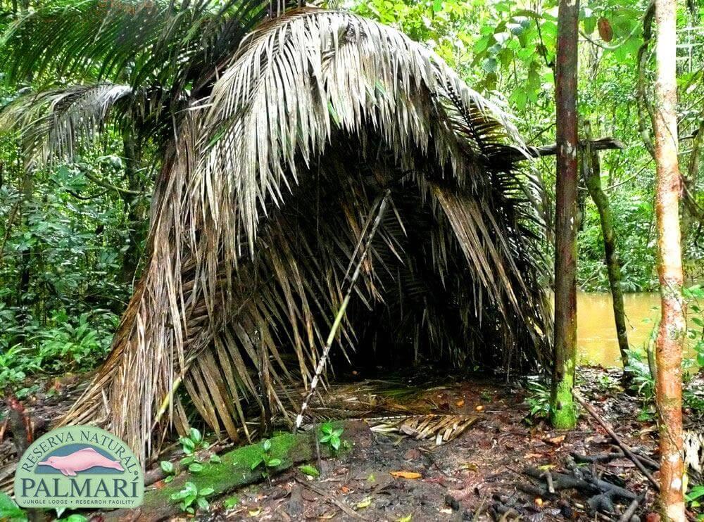 Reserva-Natural-Palmari-Indigenous-39