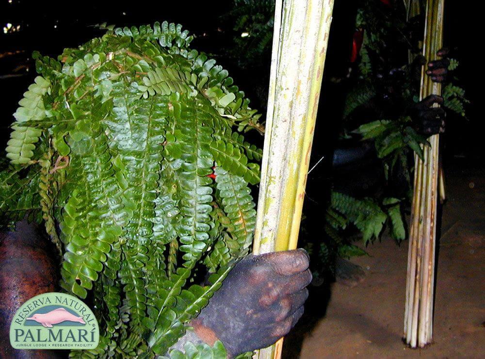 Reserva-Natural-Palmari-Indigenous-43
