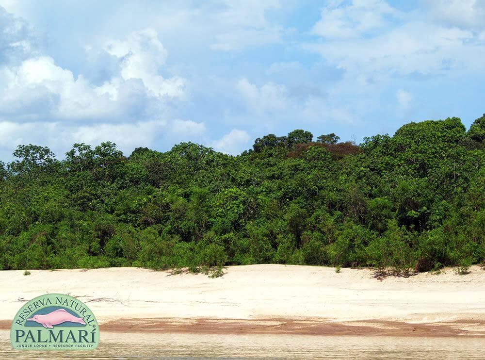 Reserva-Natural-Palmari-Landscapes-15