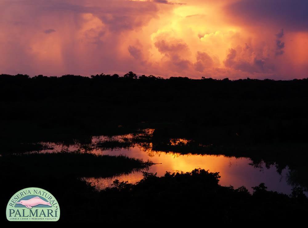 Reserva-Natural-Palmari-Landscapes-27