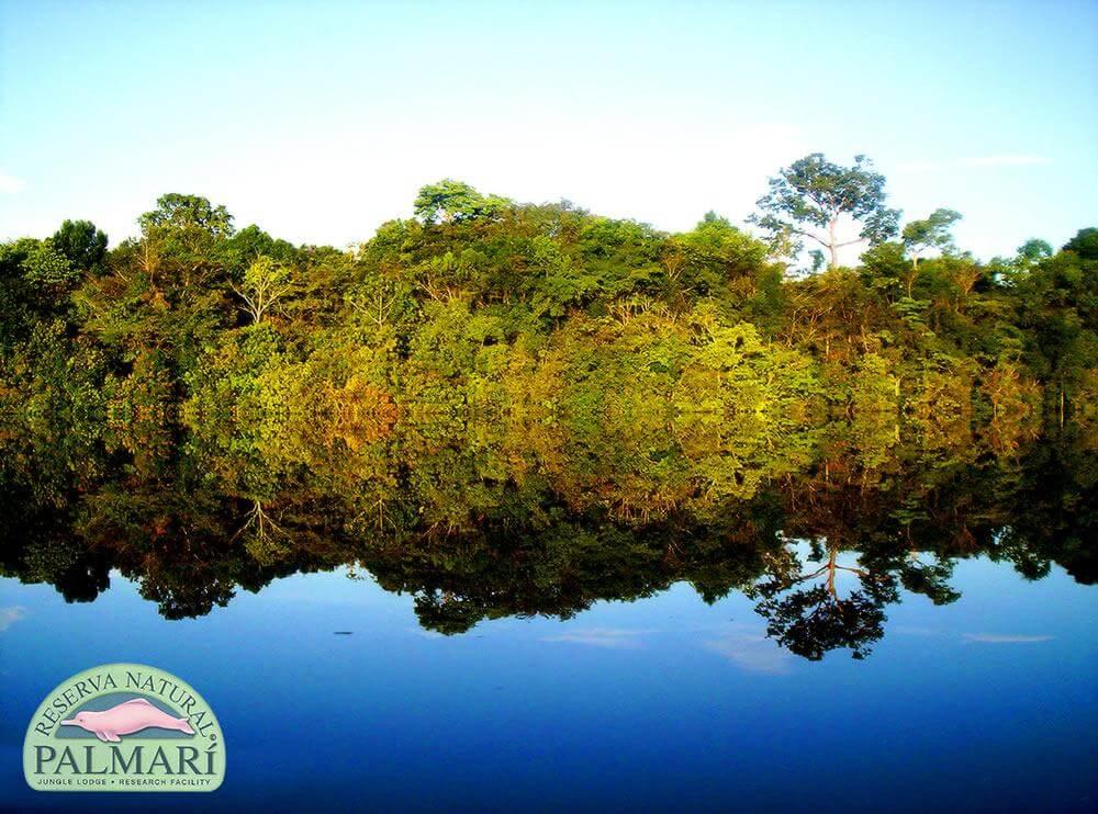 Reserva-Natural-Palmari-Landscapes-29