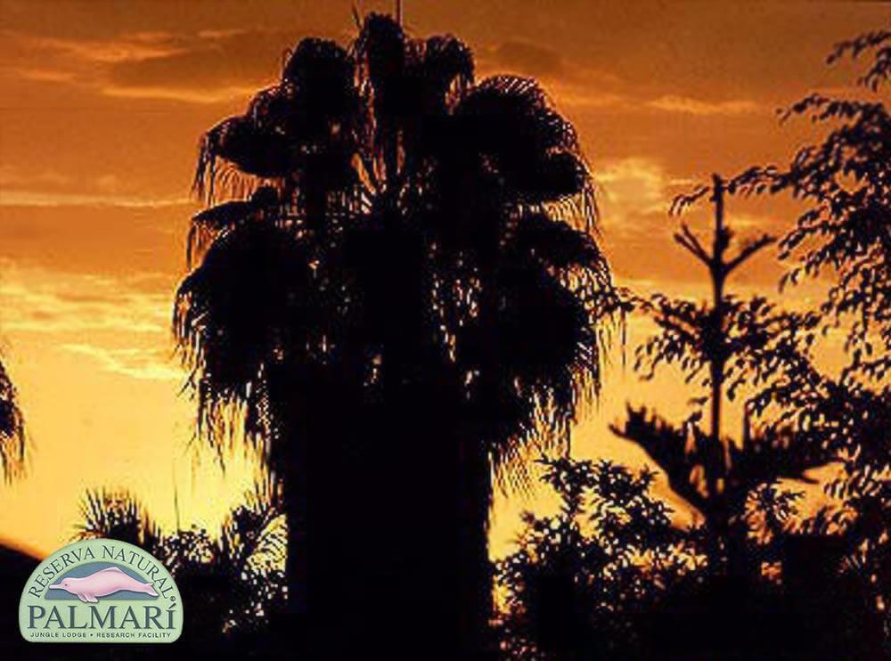 Reserva-Natural-Palmari-Landscapes-30