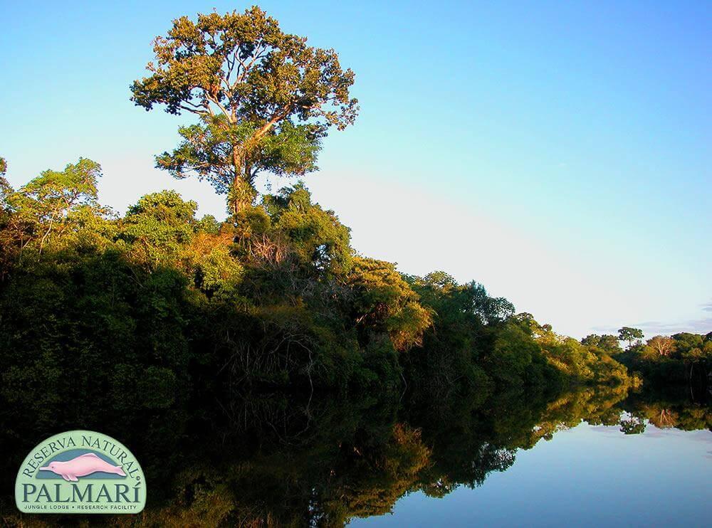 Reserva-Natural-Palmari-Landscapes-31