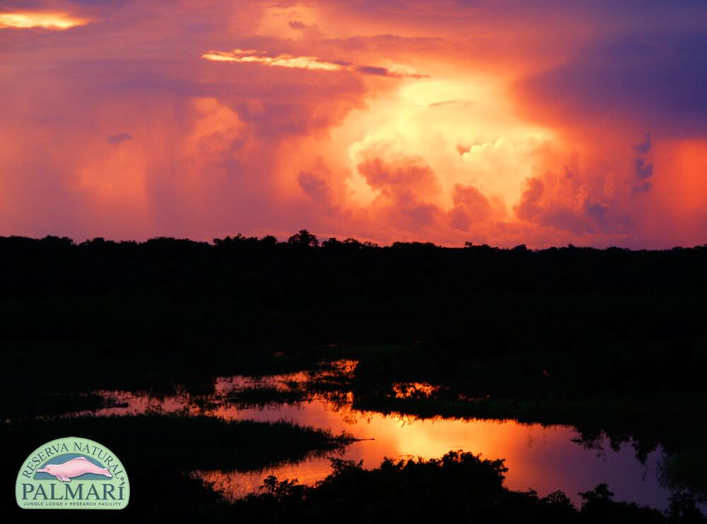 Reserva-Natural-Palmari-Landscapes-39