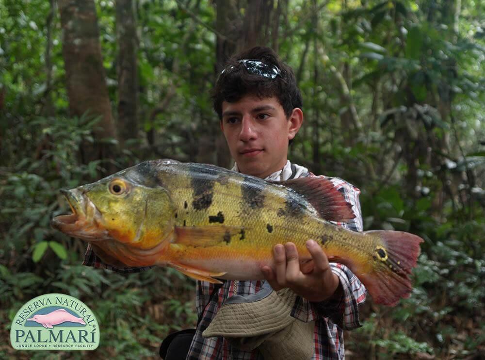 Reserva-Natural-Palmari-Sport-Fishing-15