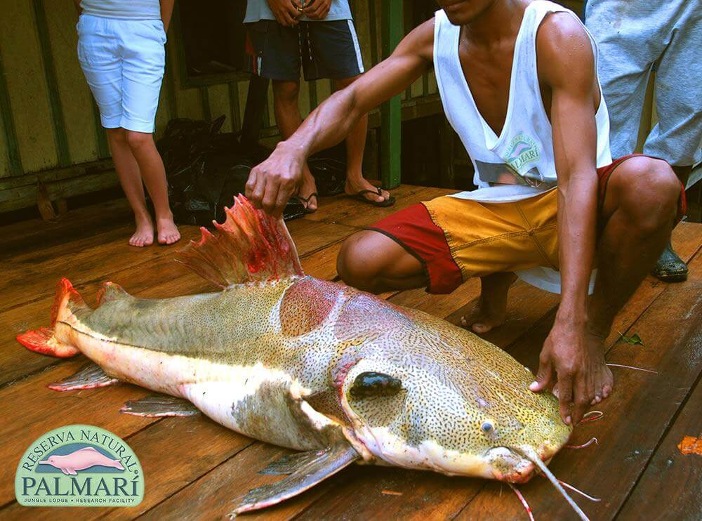 Reserva-Natural-Palmari-Sport-Fishing-25