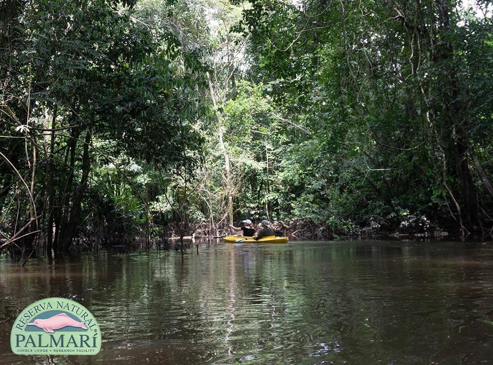 Reserva-Natural-Palmari-Trekking-04