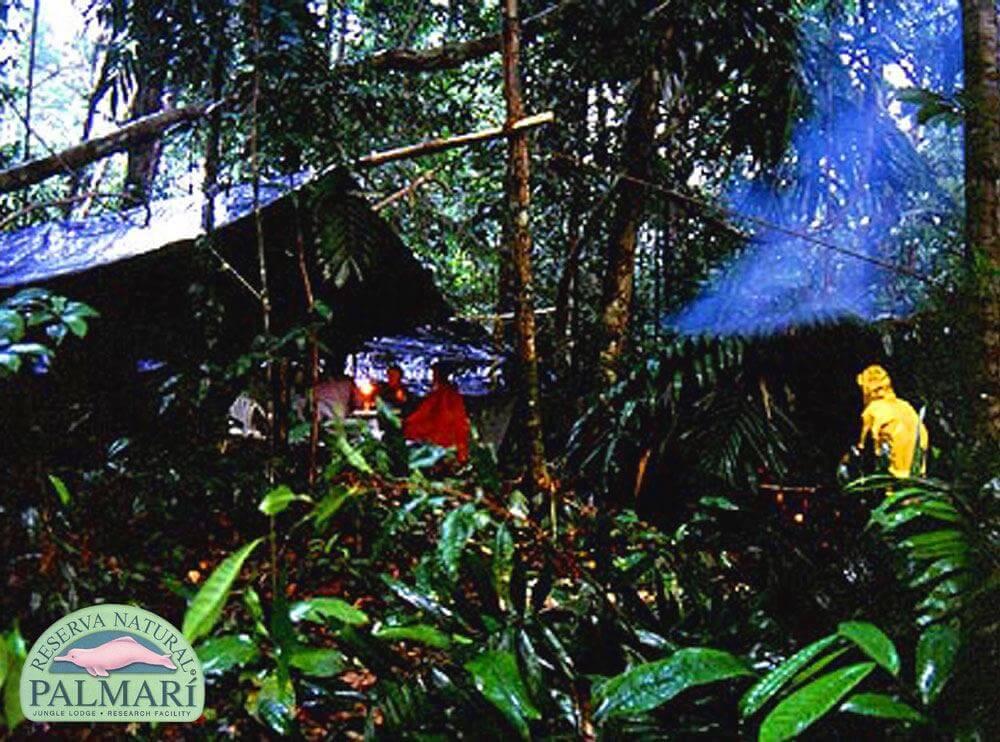Reserva-Natural-Palmari-Trekking-13
