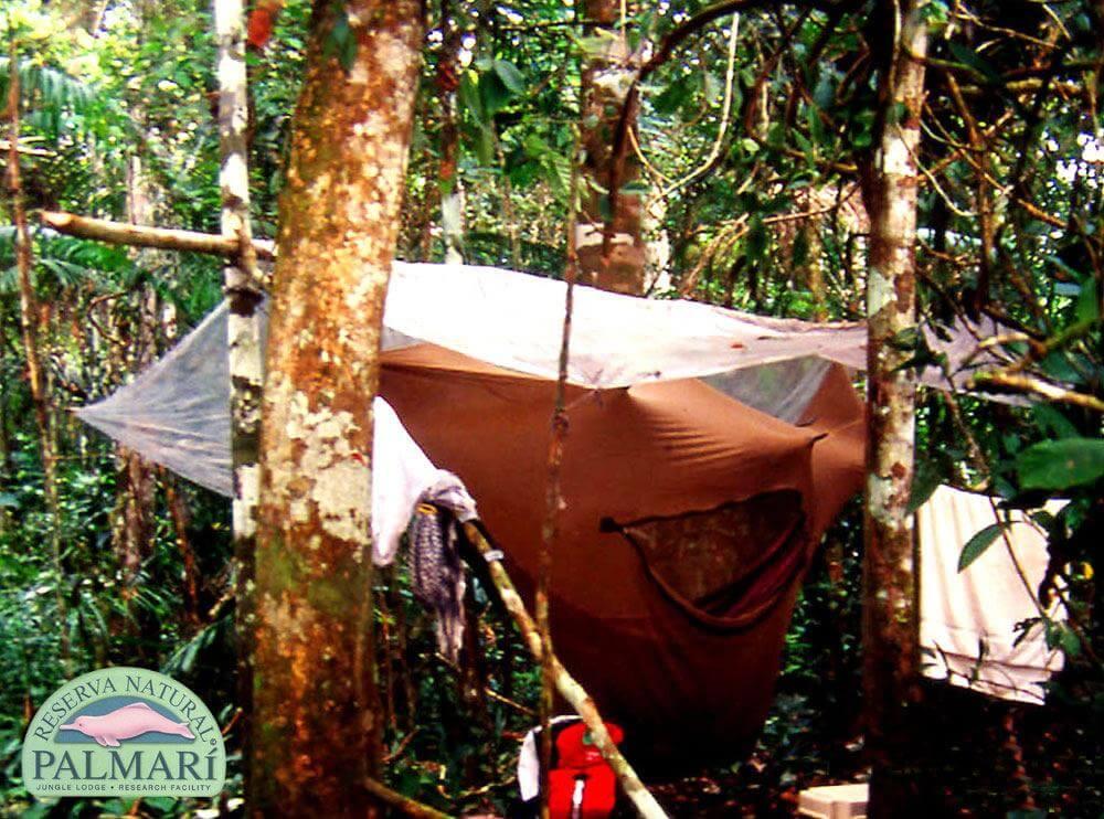 Reserva-Natural-Palmari-Trekking-14