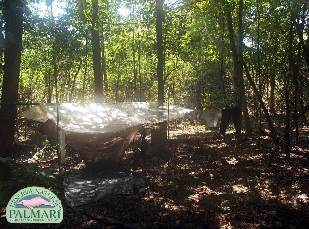Reserva-Natural-Palmari-Trekking-16