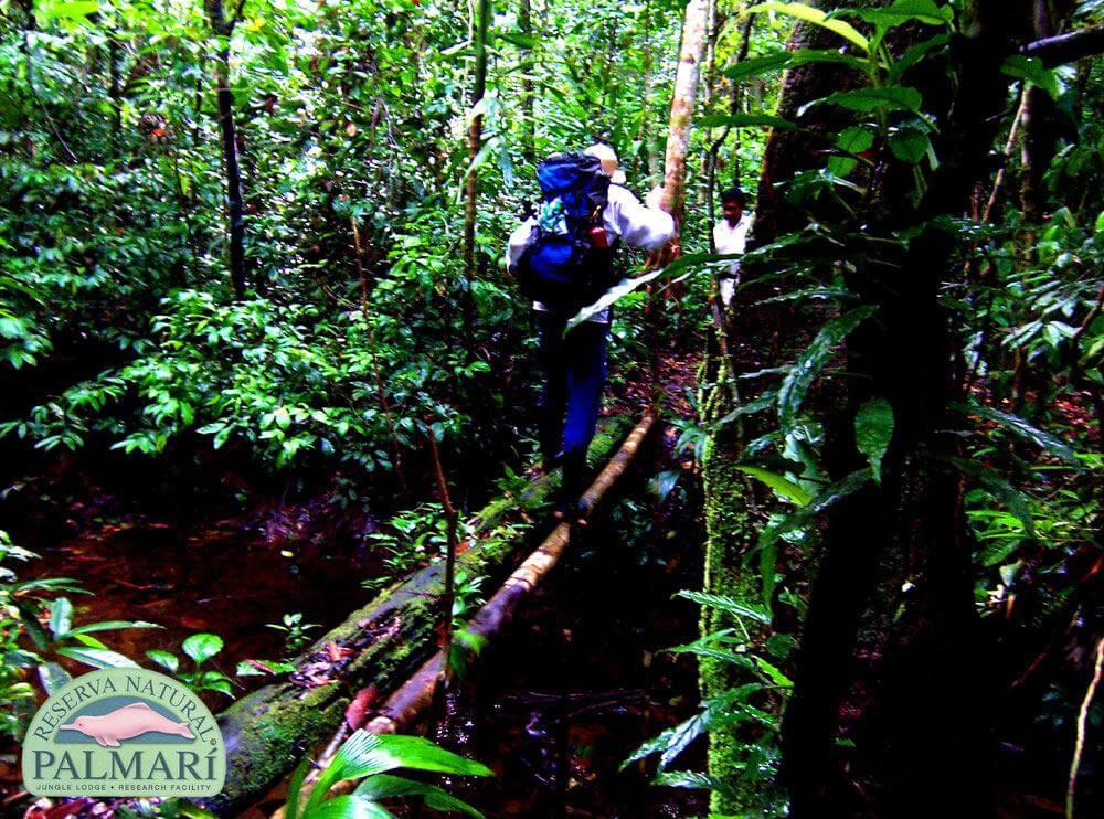 Reserva-Natural-Palmari-Trekking-21