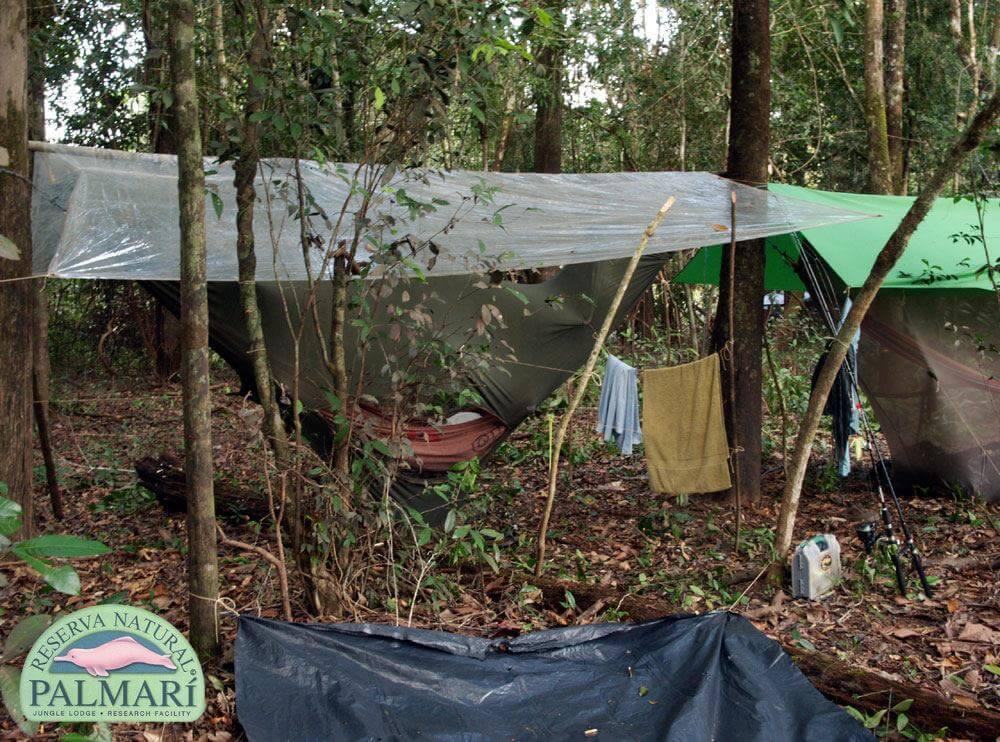 Reserva-Natural-Palmari-Trekking-25