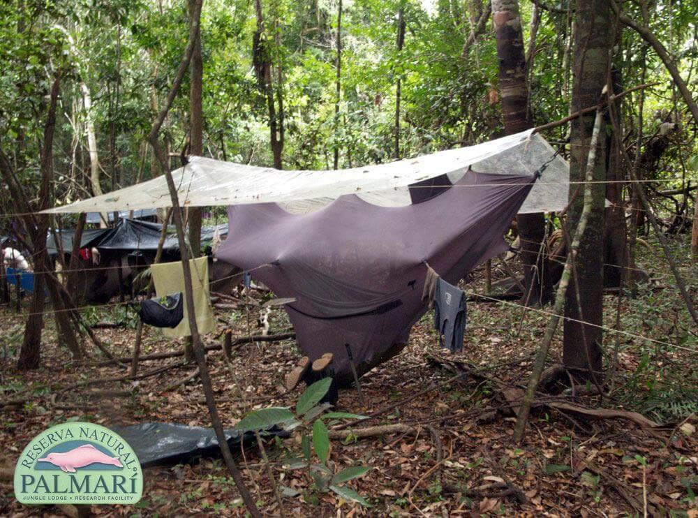 Reserva-Natural-Palmari-Trekking-26