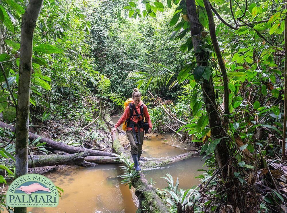 Reserva-Natural-Palmari-Trekking-27