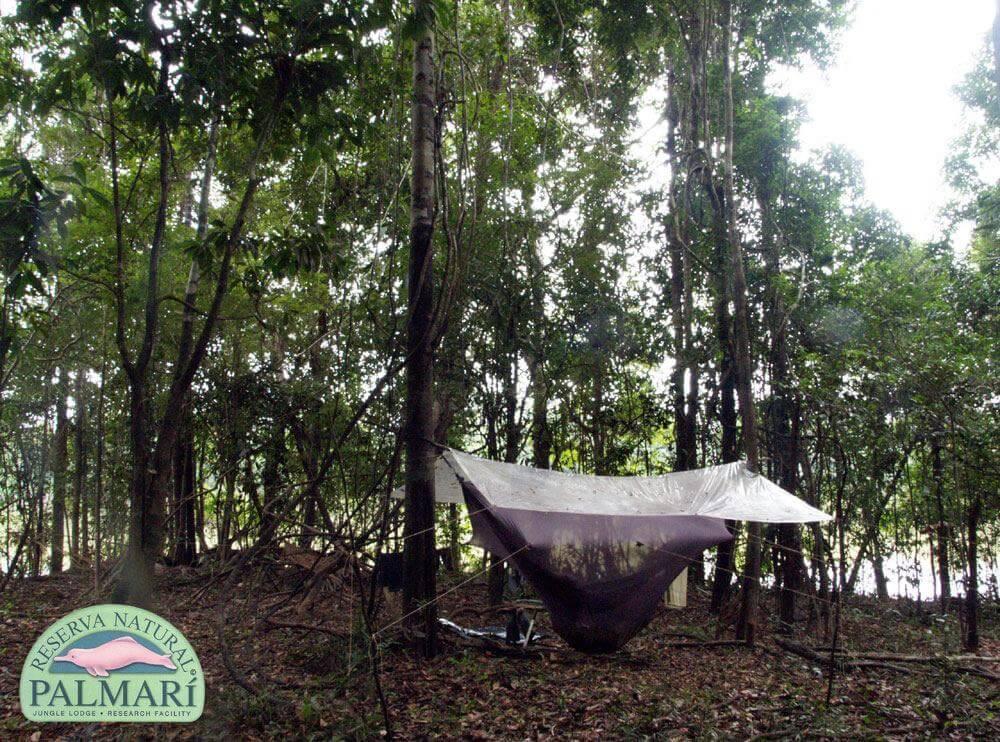 Reserva-Natural-Palmari-Trekking-28