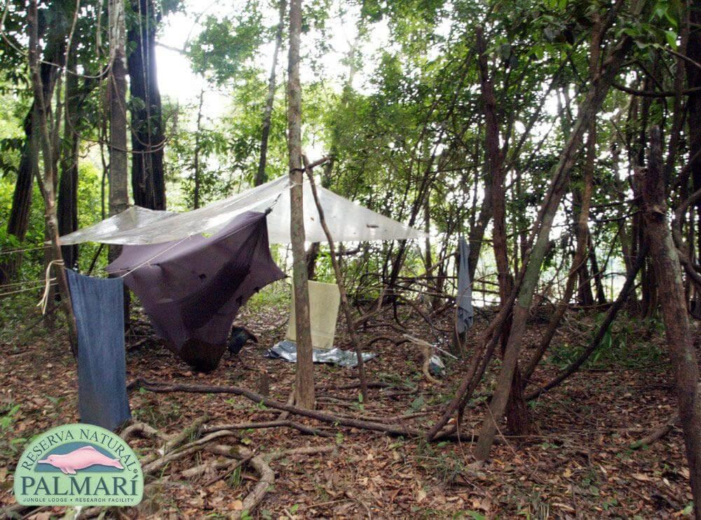 Reserva-Natural-Palmari-Trekking-29