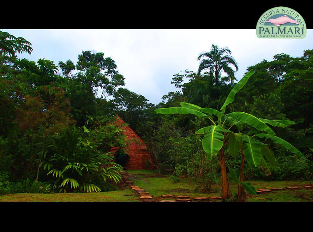 Reserva-Natural-Palmari-Visitors-Centre-09